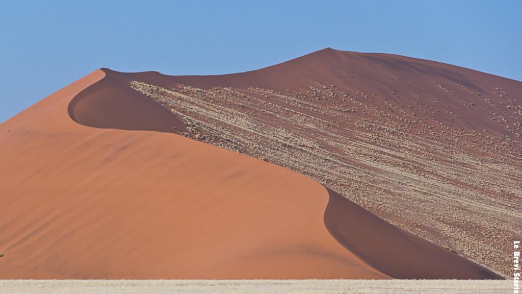 Le dune del Namib