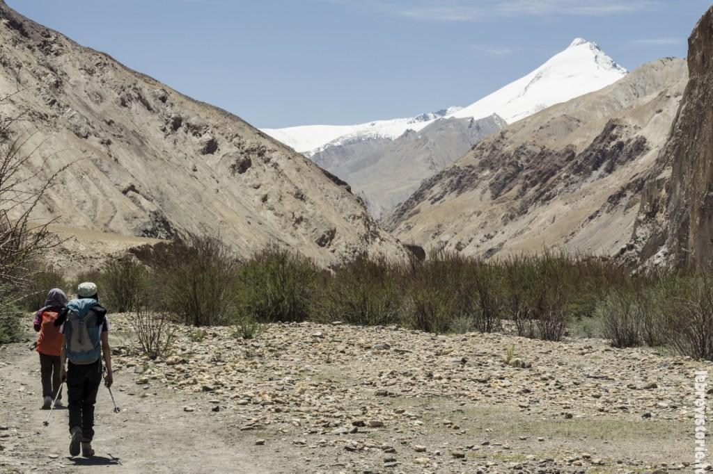 Trekking solitario lungo la desolata valle del Markha